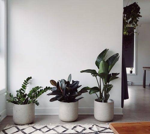 5 voordelen van tapijten voor residentieel gebruik